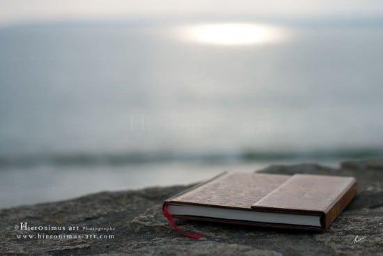 'Amra bint Abd al-Rahman, « un océan de savoir inépuisable »