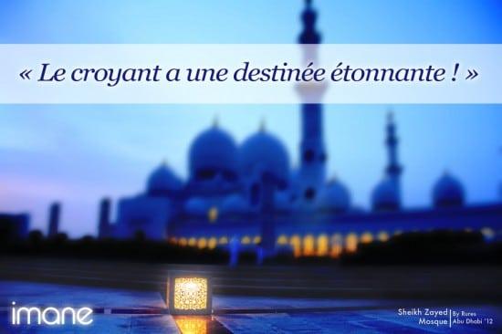 [Hadith's day] La patience et le croyant