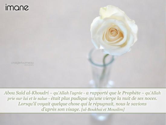 [Hadith's day] La pudeur chez le Prophète