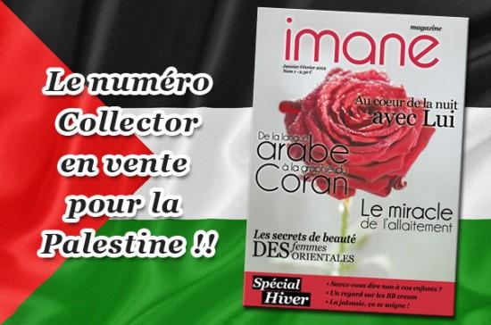 Mag 1 collector aux enchères