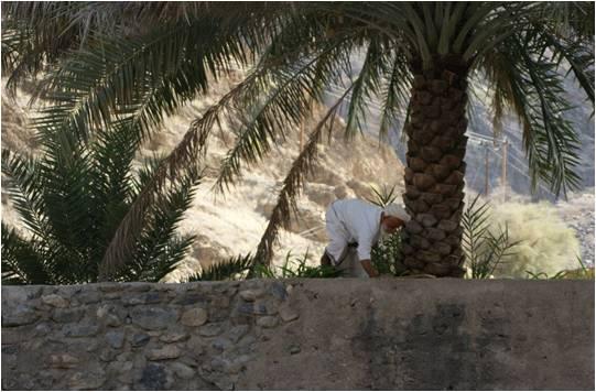 Carnet de voyage #2  –  Sultanat d'Oman
