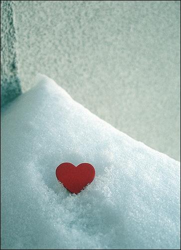 Les bons gestes pour affronter l'hiver