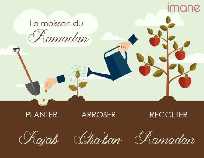 Préparer Ramadan : Rajab, un mois pour semer
